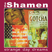 Strange Day Dreams by The Shamen