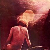 Trindade - Música Instrumental Brasileira by Various Artists