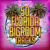 50 Florida Bigroom Tracks by Various Artists