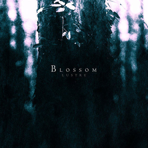 Blossom by Lustre