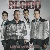Ligas Mayores by Regido