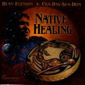 Native Healing by Dean Evenson