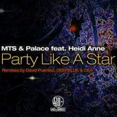 Party Like a Star (feat. Heid Anne) by Heidi Anne