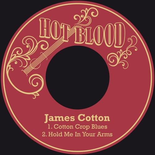 Cotton Crop Blues von James Cotton