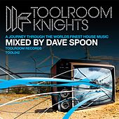 Toolroom Knights Mixed By Dave Spoon by Various Artists