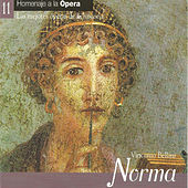 Norma - Vincenzo Bellini by Various Artists