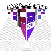 Para/meter, Vol. 4 by Various Artists