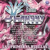 La Primeras Huellas by Banda Maguey