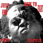 Just Know How to Fight by Sefu Kafele