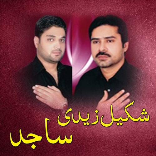 Shakeel Zaidi / Sajid by Sajid