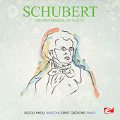 Schubert: Die Winterreise, Op. 89, D.911 (Digitally Remastered) by Ernst Gröschel