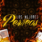 Los Mejores Perreos by Various Artists