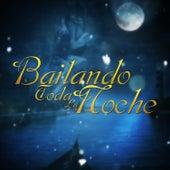 Bailando Toda la Noche by Various Artists