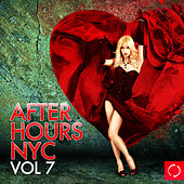 Afterhours Nyc, Vol. 7 by Various Artists
