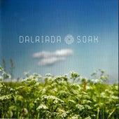 Soak by Dalriada
