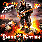 Thizz Nation Vol. 17 Starring J-Diggs by Various Artists