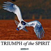 Triumph Of The Human Spirit by Country Dance Kings