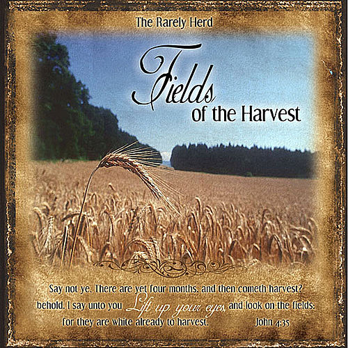 Fields of the Harvest by The Rarely Herd