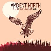 Ambient North - A Chill Out Excursion, Vol. 4 by Various Artists