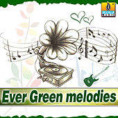 Evergreen Melodies by Various Artists