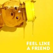 Feel Like a Friend by The Wet Darlings