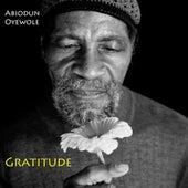 Gratitude by Abiodun Oyewole