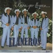 Puras Que Llegan by Los Llaneros De Guamuchil