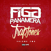 Figg Panamera Trap Tones Vol 2 by Various Artists