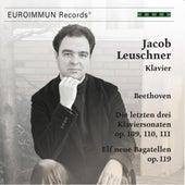 Beethoven - Die letzten drei Klaviersonaten, Op. 109, 110, 111; Elf neue Bagatellen, Op. 119 by Jacob Leuschner