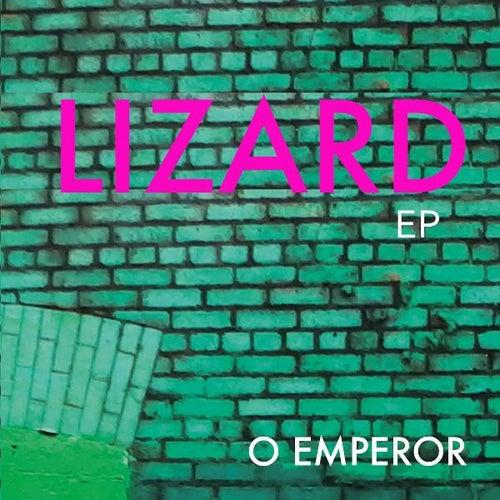 Lizard by O Emperor