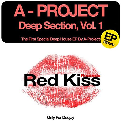 Deep Section , Vol1 by A Project