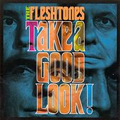Take a Good Look by The Fleshtones