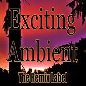 Exciting Ambient (Progressive Chillout Music Album Plus Bonus Megamix) by Deepient