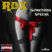 Something Special - Single by RDX
