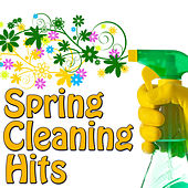 Spring Cleaning Hits, Vol.2 by Various Artists