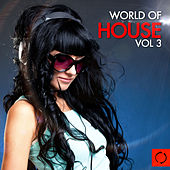 World of House, Vol. 3 by Various Artists