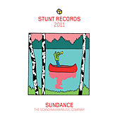 Stunt Records Compilation, Vol. 19 by Various Artists