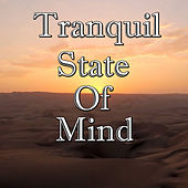 Tranquil State Of Mind, Vol.3 by Tai Chi