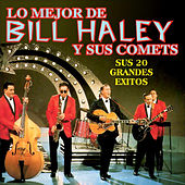 Sus 20 Grandes Exitos by Bill Haley & the Comets