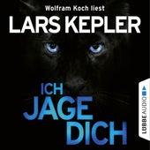 Ich jage dich by Lars Kepler