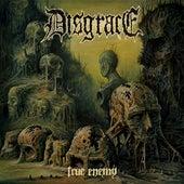 True Enemy by Disgrace