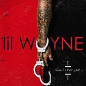Sorry 4 the Wait 2 von Lil Wayne