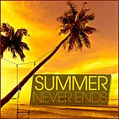 Summer Never Ends by Various Artists