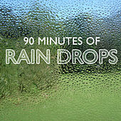 90 Minutes Of Rain Drops by Various Artists