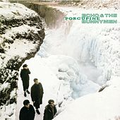 Porcupine by Echo and the Bunnymen