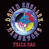 Trick Bag by David Shelley