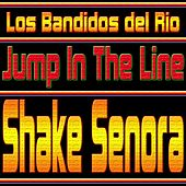 Shake Senora (Jump in the Line) by Los Bandidos del Rio