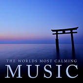 The World's Most Calming Music by Various Artists