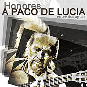 Homenaje a Paco de Lucia by Various Artists
