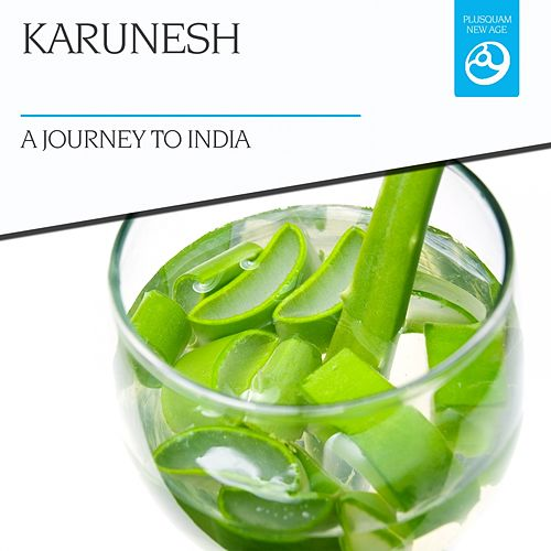 A Journey to India by Karunesh
